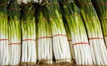 章丘大葱哪里能买到 章丘大葱最长能长多长